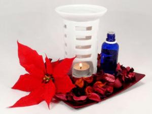 Duftöl für die Vertreibung von Stechmücken in Innenräumen - Biteling