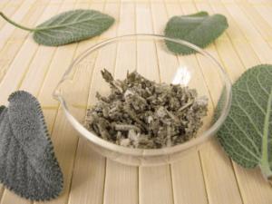 Verglimmender Salbei gegen Stechmücken - Biteling