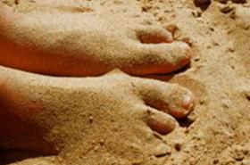 Alles über Sandflöhe - Biteling